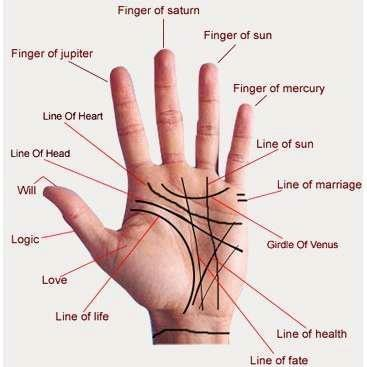 https://www.pinterest.com/lymansandie/palm-reading-chart/