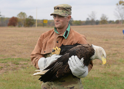 photo credit: The National Guard Minnesota National Guard via photopin (license)